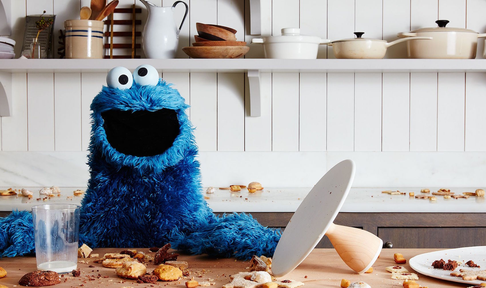 8c7ff191-931f-484b-aa1d-0cdc79ceb0fa-2015-1209_cookie-monster_mess_sq_james-ransom-162